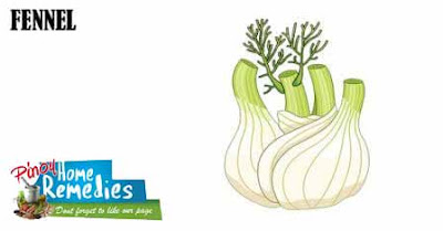 Home Remedies For Gas: Fennel