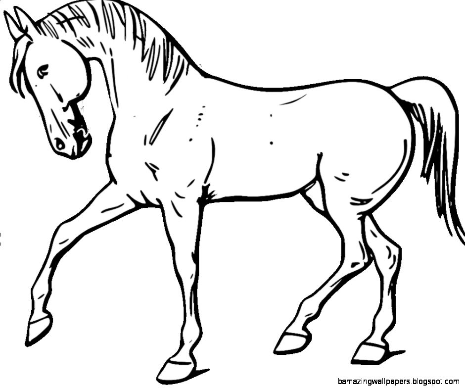 Walking Horse Outline: Amazing Wallpapers