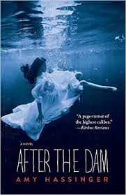 https://www.goodreads.com/book/show/29872968-after-the-dam?ac=1&from_search=true