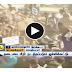 Tamil People releases Jallikattu bulls at Alanganallur   TAMIL NEWS
