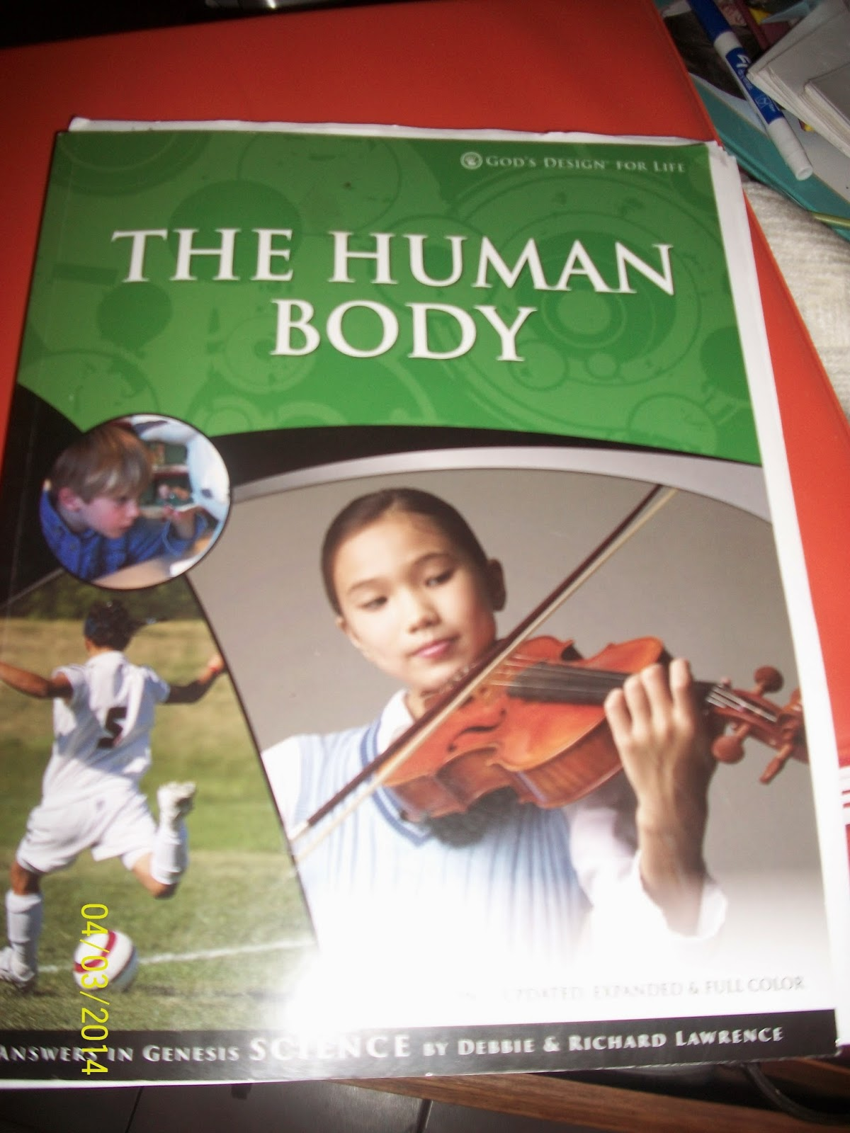 Growing In God S Grace Answers In Genesis The Human Body