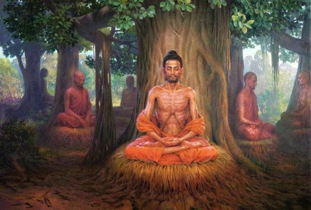 Đạo Phật Nguyên Thủy - Đường Xưa Mây Trắng - Chương 15: Khổ hạnh lâm