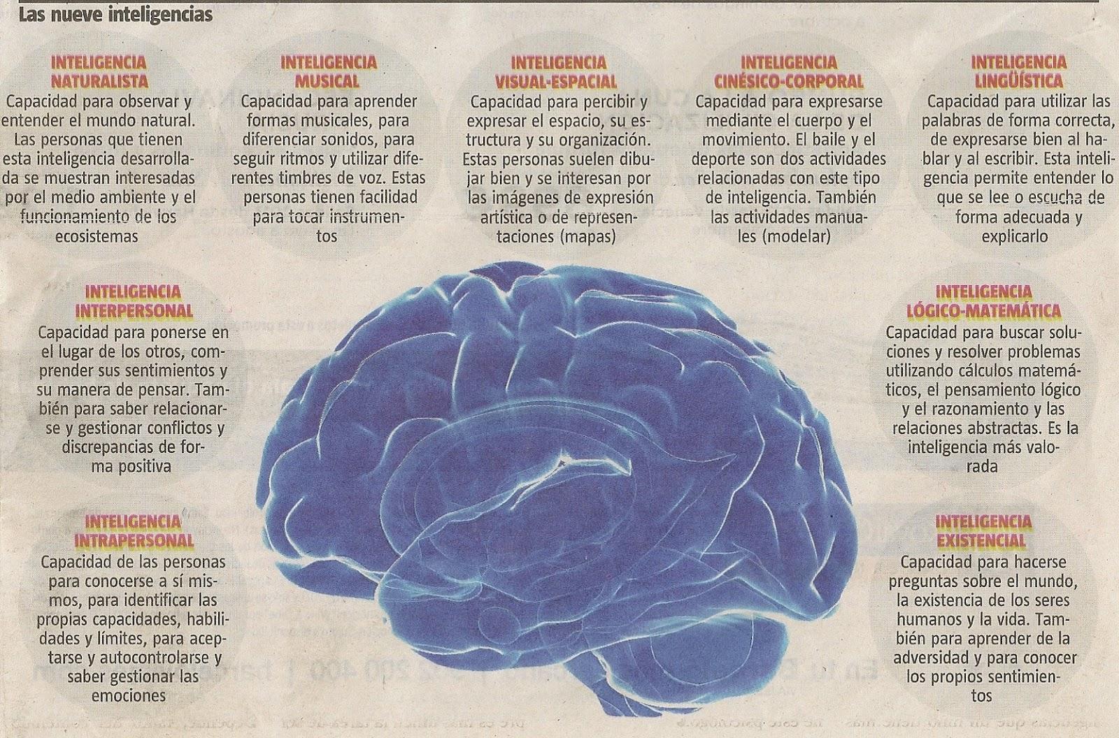 http://convivencia.wordpress.com/2008/01/28/la-teoria-de-las-inteligencias-multiples-de-gardner/