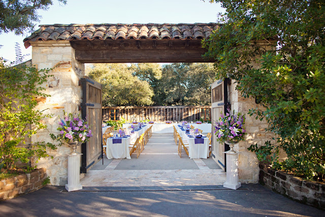 Bride+bridal+vineyard+winery+wine+purple+violet+Lavender+centerpieces+roses+dried+rustic+outdoor+spring+wedding+summer+wedding+fall+wedding+california+napa+valley+sonoma+white+floral+Mirelle+Carmichael+Photography+14 - Lavender Sprigs