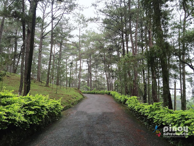 Top Things to do in Baguio travel guide