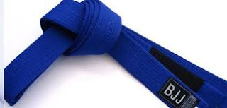 Brazilian Jiu JItsu. Técnicas para cinturón azul. Blood Brothers BJJ