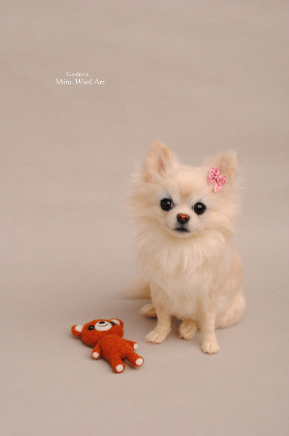 12-Chihuahua-Miru-Felting-Wool-Animals-www-designstack-co