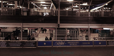 Pure Horse Sense Blog- Horse Palace Overlooking the Warm-Up Ring at the RAWF
