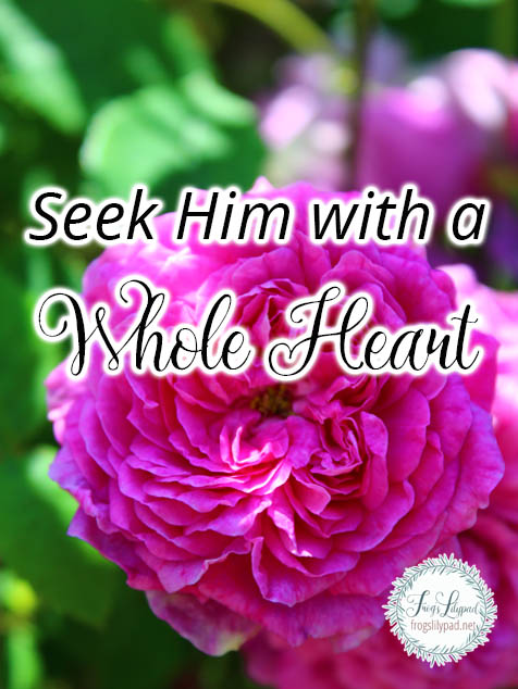 Seek Him with a Whole Heart Psalm 119:10-11