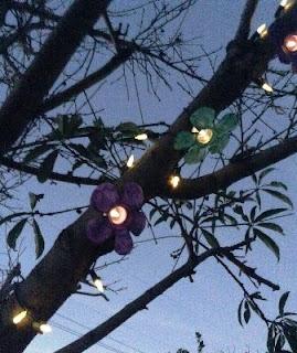Membuat Sendiri Lampu Bunga di Pohon dari Botol Bekas