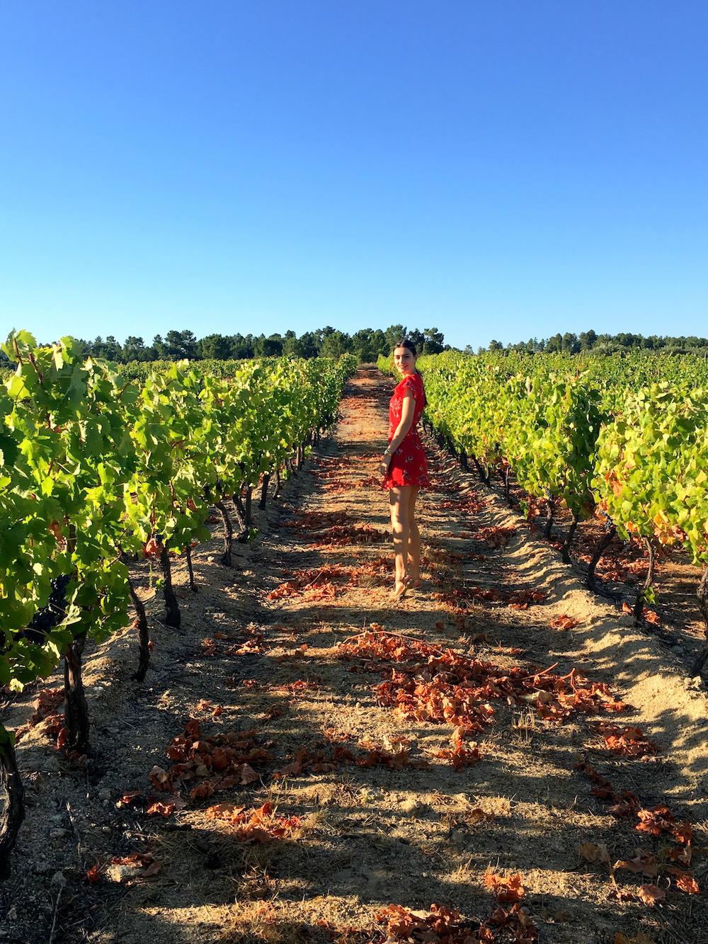 vineyard peexo travel blogger portugal