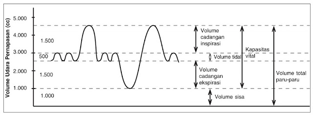 Grafik Volume udara pernapasan