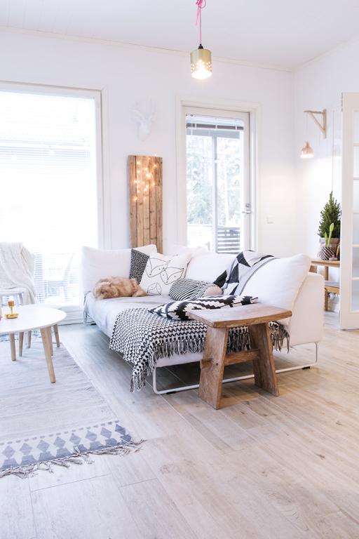 Svandinavian home design