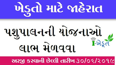 i Khedut Sahay Yojna For Pashupalan I ikhedut.gujarat.gov.in