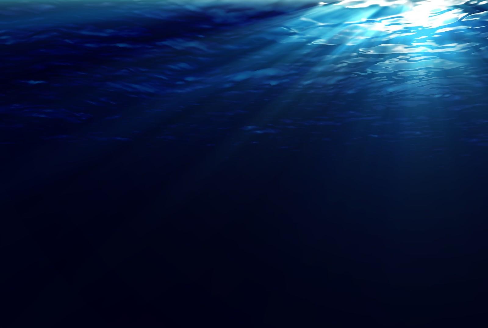 underwater wallpaper 4