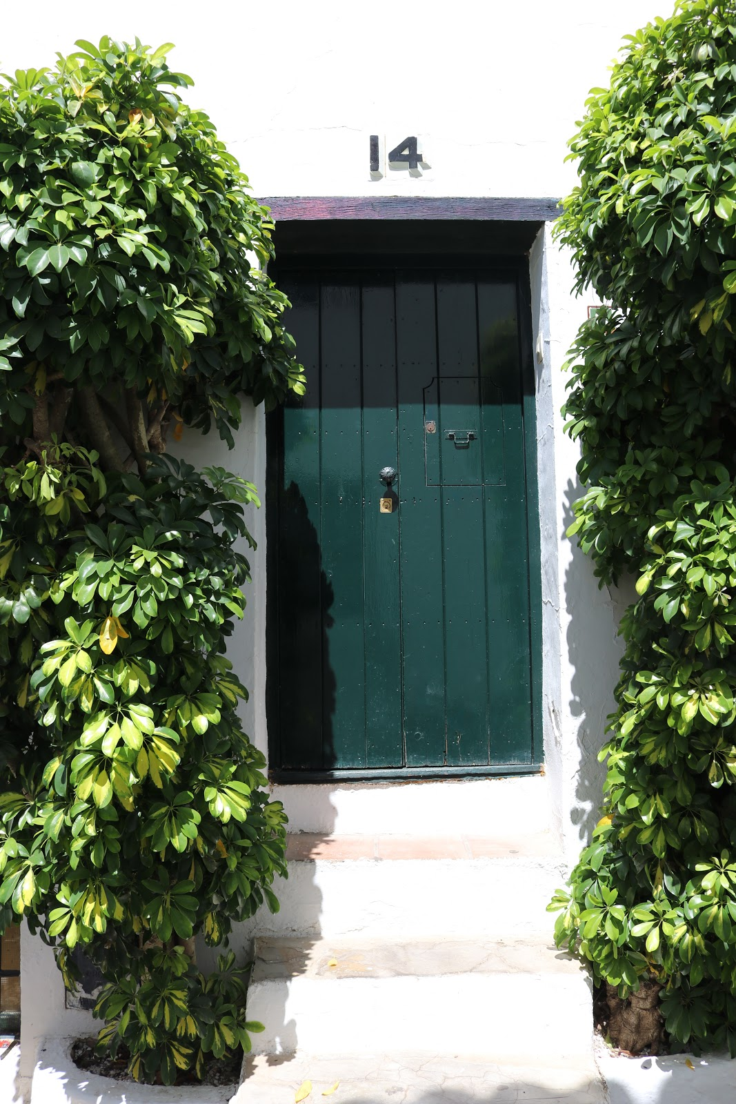 Green Door against white walls in Castillo de Castellar, Spain
