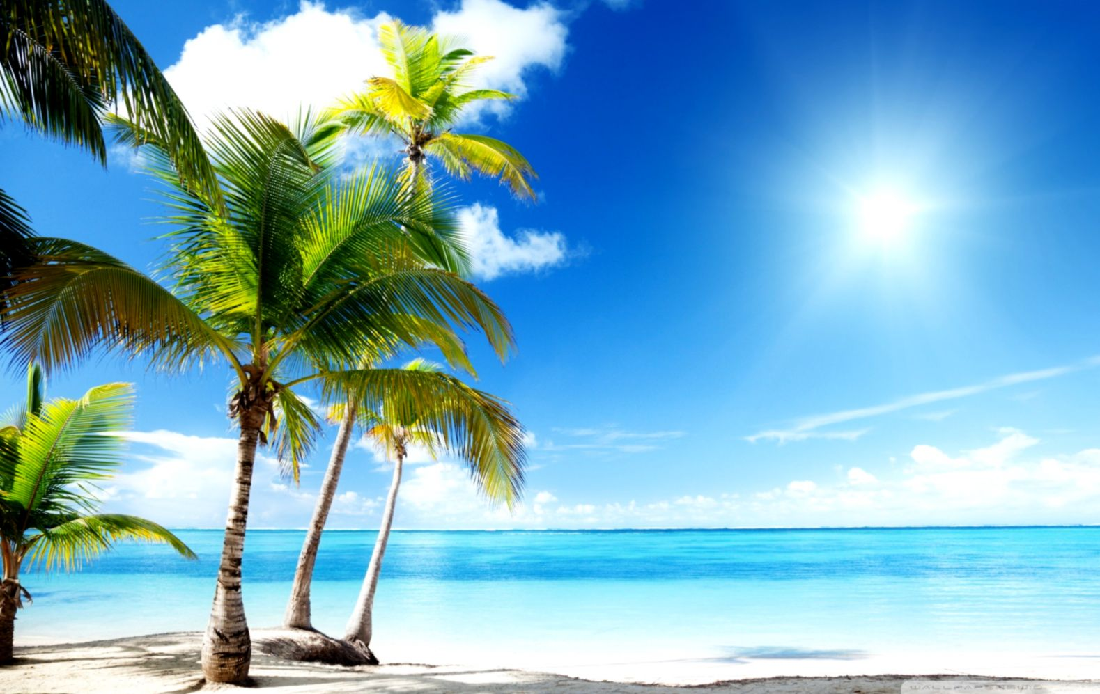Free Tropical Beach Wallpapers Desktop Decor Di Design