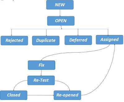 bug life cycle diagram