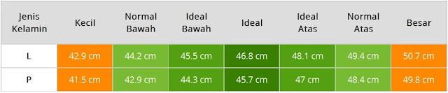 cm dan untuk tinggi Anak wanita ialah  Berat Badan & Tinggi Anak Usia Satu Tahun Tiga Bulan Laki-Laki & Perempuan