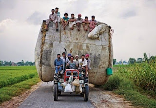 देसी लोगों कि ऐसी मजेदार तस्वीरें जिन्हें देख आप भी बोलेंगे मज़ा आ गया (Funny Images Of Indian Peoples In Hindi), Funny Images In Hindi, Latest Funny Images Of Indian Peoples, Funny Photos, Latest Funny Photos, Funny Photos Of Indian Peoples