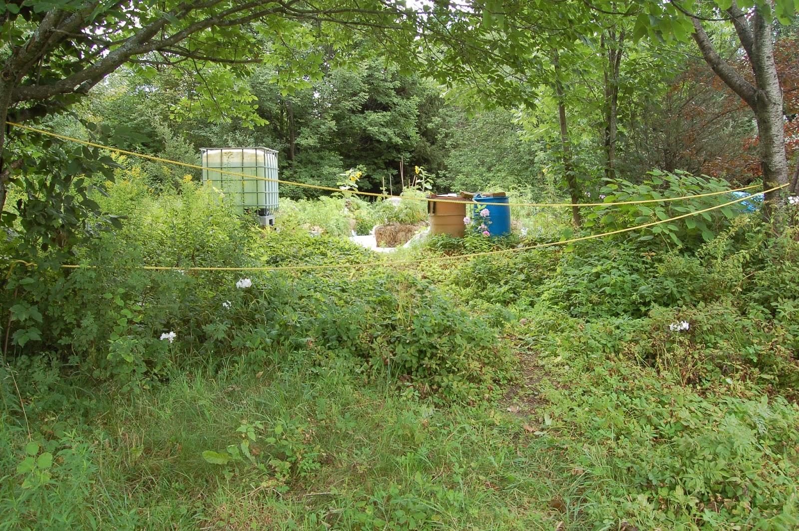 Potager en pente merveilleux jardin potager original a for Amenagement jardin nord est