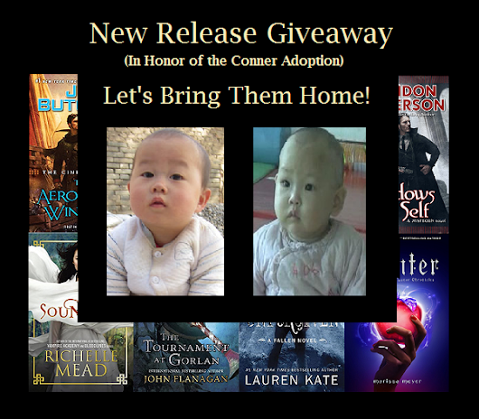 Sarah's Reviews: Supporting Adoption! International New Release Giveaway (Winner's Choice): Aeronaunts Windlass, Winter, Unforgiven, Soundless and More!