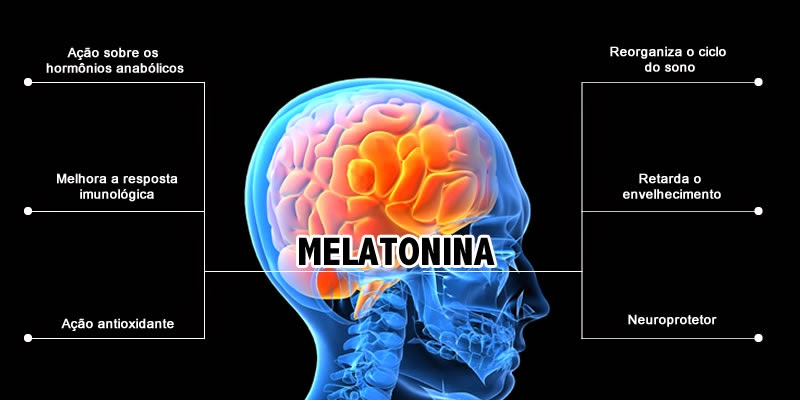 Www melatonina net scientific study of sleep