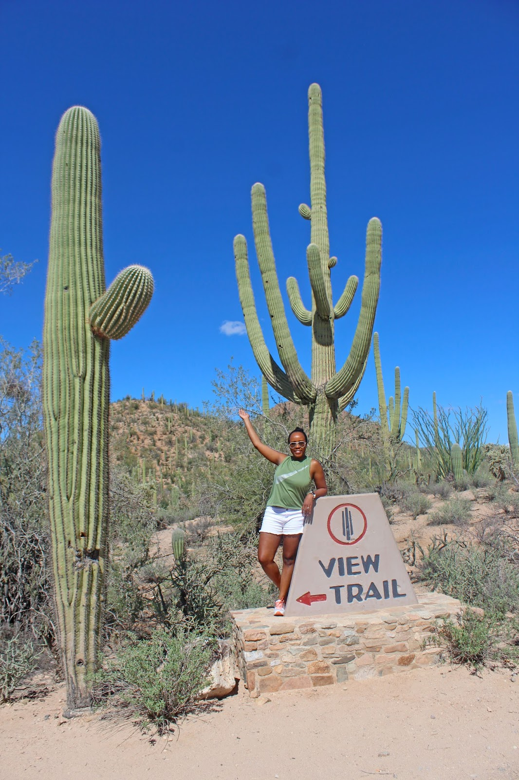 saguaro national park day trip 10