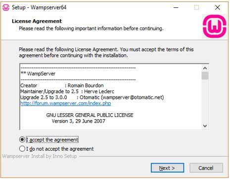 setup Wamp server