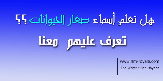 تعرف إلى أسماء صغار الحيوانات باللغة العربية الفصحى .