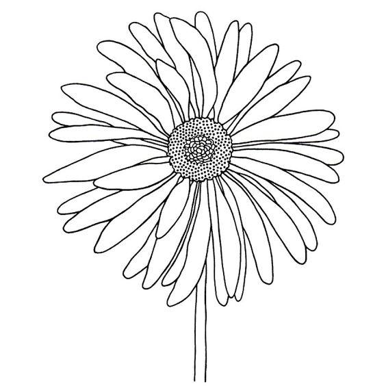 Tranh tô màu bông hoa cúc