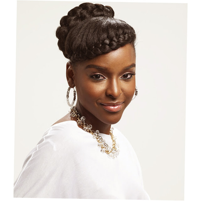 African American Braids Hairstyles 2011 Picture