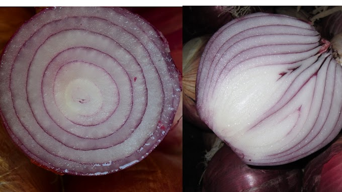 Benefits of onion juice.Top and best 6 various informations.