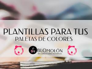 Plantillas Para Tus Paletas De Colores