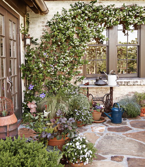 Clematis And Confederate Jasmine Climb The Brick Wall In Background Stonework On Patio Floor Ties Everything Together Beautifully