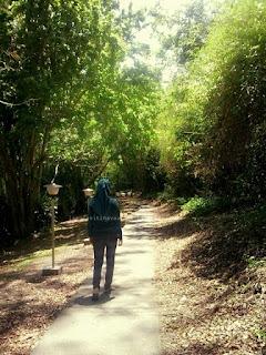 Jalan hutan yang harus dilalui