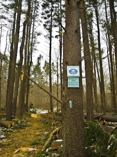 The Paugussett Trail Head at East Village Road Monroe CT