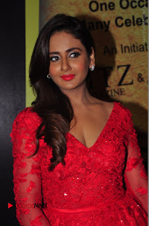 Actress Model Parul Yadav Stills in Red Long Dress at South Scope Lifestyle Awards 2016 Red Carpet  0011.JPG