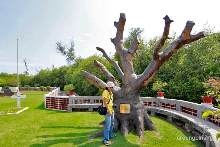 pohon mindi ereveld ancol jakarta