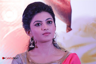 Actress Anandhi Enakku Innoru Per Irukku Press Meet  0034