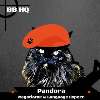 8 Things About The B Team @BionicBasil® Pandora