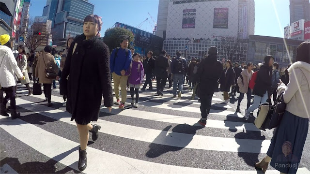 Shibuya Crossing Street