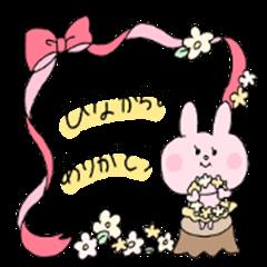hina rabbit is cute
