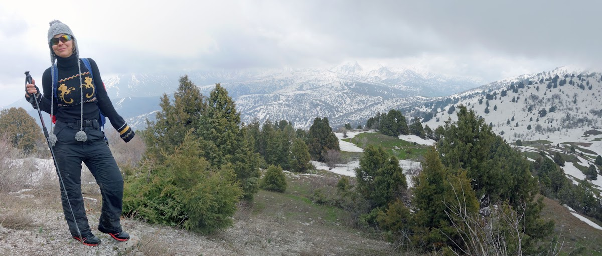 DSC01916 Panorama