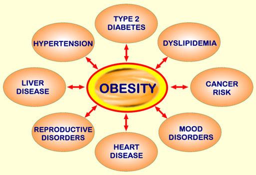 deficit caloric per sin perdida de peso cupa de estres