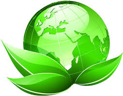 Making the World a Greener Place One Person at a Time