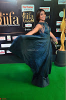 Shriya Saran in Beautiful Transparent Dark Gown IIFA Utsavam Awards 2017 025.JPG