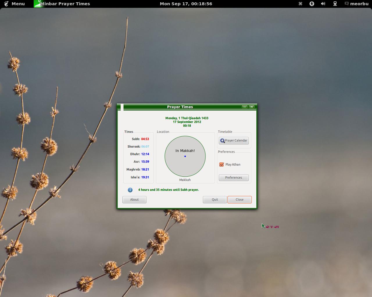 ubuntu sabily 12.04
