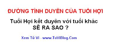 TINH DUYEN TUOI HOI