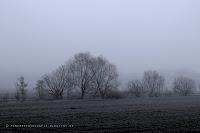 http://fineartfotografie.blogspot.de/2014/03/nebellandschaften-am-fue-des.html